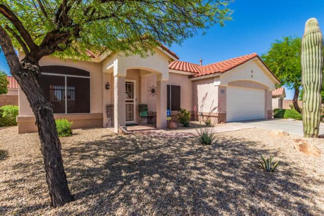 15445 W Via Manana, Sun City West, AZ 85375 (MLS #5755358) :: The Worth Group