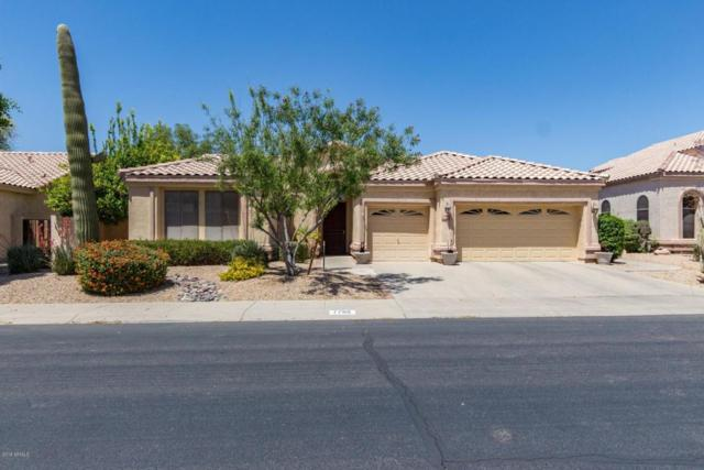 1796 W Canary Way, Chandler, AZ 85286 (MLS #5755363) :: Lux Home Group at  Keller Williams Realty Phoenix