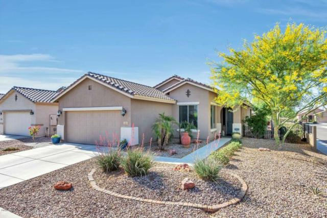 22603 W Loma Linda Boulevard, Buckeye, AZ 85326 (MLS #5755367) :: Lifestyle Partners Team