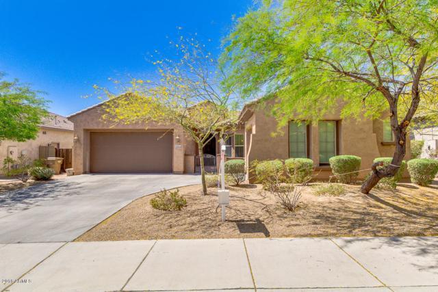 27434 N Higuera Drive, Peoria, AZ 85383 (MLS #5755385) :: The Laughton Team