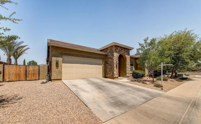 3774 E Arianna Court, Gilbert, AZ 85298 (MLS #5755398) :: The Jesse Herfel Real Estate Group