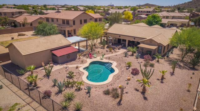 32131 N Chestnut Trail, San Tan Valley, AZ 85143 (MLS #5755438) :: The Everest Team at My Home Group