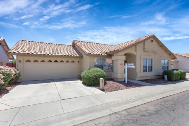 813 E Michigan Avenue, Phoenix, AZ 85022 (MLS #5755449) :: Yost Realty Group at RE/MAX Casa Grande