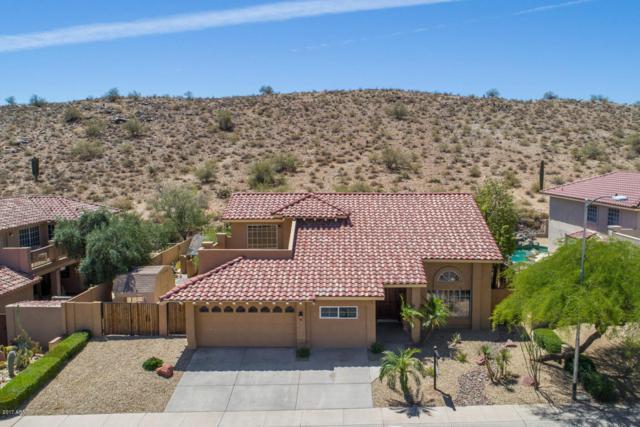 3217 E Rock Wren Road, Phoenix, AZ 85044 (MLS #5755459) :: CANAM Realty Group