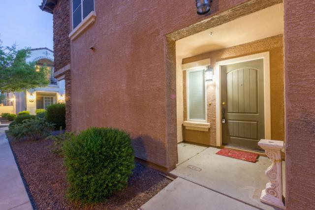 3643 E Horace Drive, Gilbert, AZ 85296 (MLS #5755468) :: Yost Realty Group at RE/MAX Casa Grande