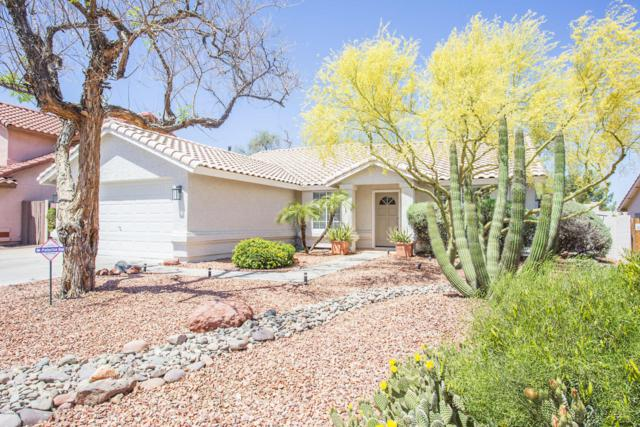 1914 E Sharon Drive, Phoenix, AZ 85022 (MLS #5755478) :: Yost Realty Group at RE/MAX Casa Grande