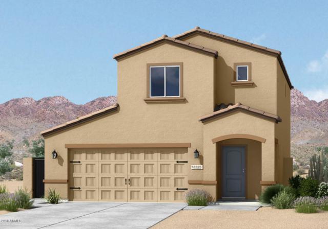 30445 N Oak Drive, Florence, AZ 85132 (MLS #5755487) :: Yost Realty Group at RE/MAX Casa Grande
