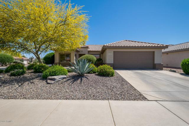 16503 W Blackhawk Court, Surprise, AZ 85374 (MLS #5755507) :: Desert Home Premier