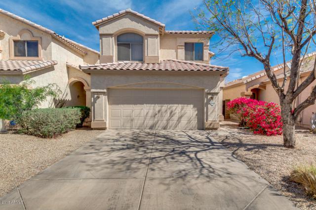 10064 E Capri Avenue, Mesa, AZ 85208 (MLS #5755520) :: Keller Williams Realty Phoenix
