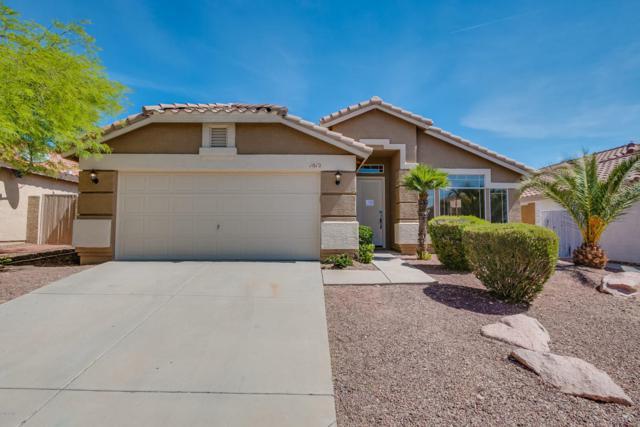 1012 E Mountain Vista Drive, Phoenix, AZ 85048 (MLS #5755546) :: CANAM Realty Group