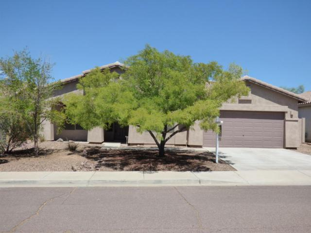 10051 S 184TH Drive, Goodyear, AZ 85338 (MLS #5755560) :: Occasio Realty