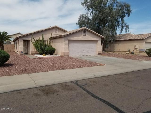16048 W Jackson Street, Goodyear, AZ 85338 (MLS #5755598) :: Realty Executives