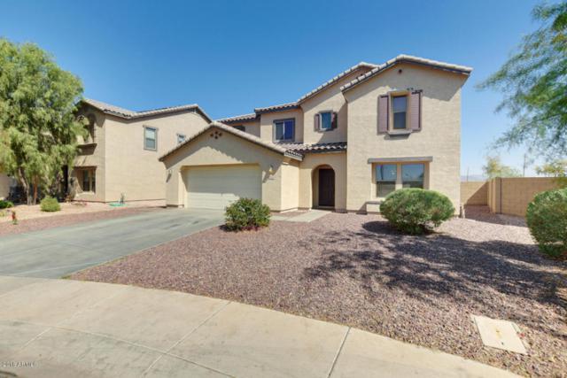 25532 W Pleasant Lane, Buckeye, AZ 85326 (MLS #5755643) :: Brent & Brenda Team