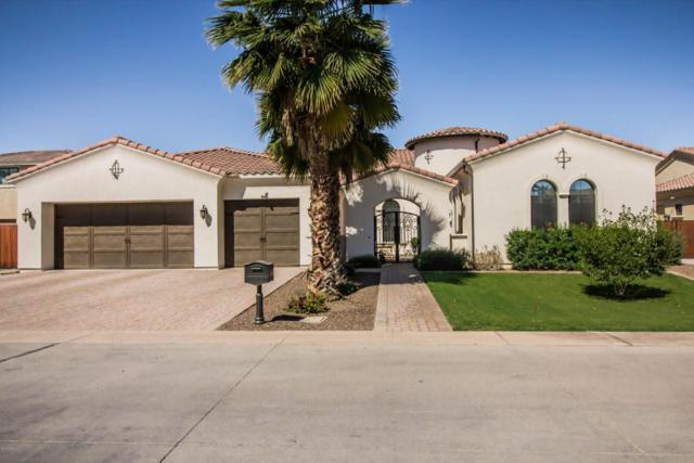 1536 S 108TH Way, Chandler, AZ 85286 (MLS #5755647) :: CANAM Realty Group
