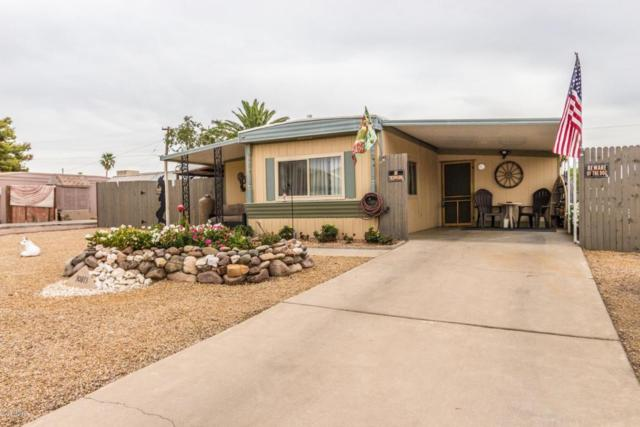 10813 W Palm Tree Drive, Sun City, AZ 85373 (MLS #5755673) :: Occasio Realty