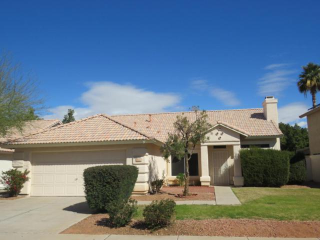 1370 W Gail Drive, Chandler, AZ 85224 (MLS #5755693) :: Arizona Best Real Estate