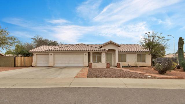 16225 S Catalina Street, Chandler, AZ 85225 (MLS #5755701) :: Arizona Best Real Estate