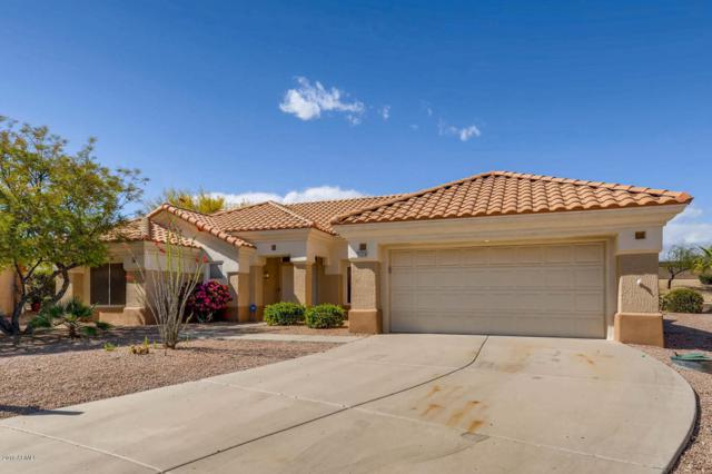 23224 N 145TH Drive, Sun City West, AZ 85375 (MLS #5755720) :: The Worth Group