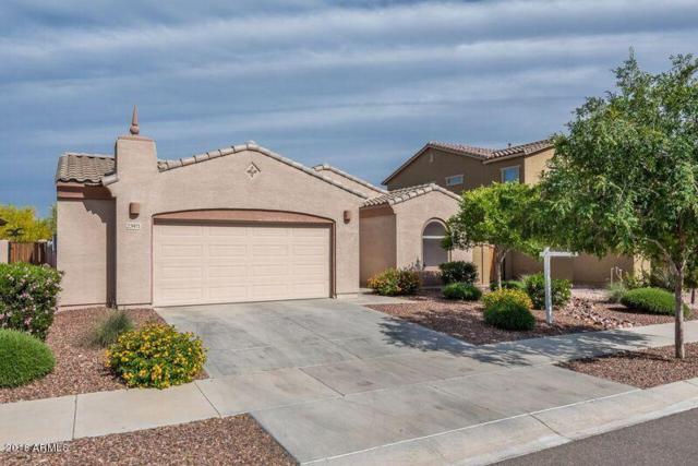 23971 N 163RD Drive, Surprise, AZ 85387 (MLS #5755734) :: Lifestyle Partners Team