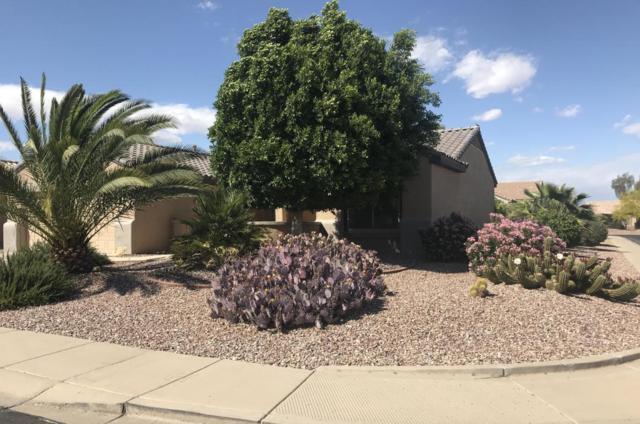 15626 W Arbor Trail, Surprise, AZ 85374 (MLS #5755738) :: Desert Home Premier