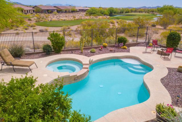 40817 N Prestancia Court, Phoenix, AZ 85086 (MLS #5755776) :: Occasio Realty