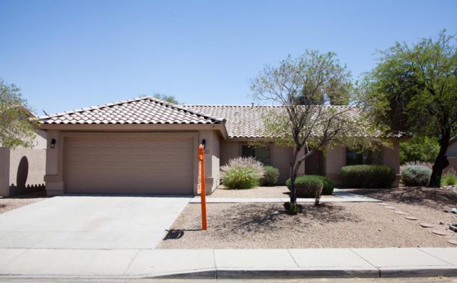 18227 N 64TH Drive, Glendale, AZ 85308 (MLS #5755786) :: The Worth Group