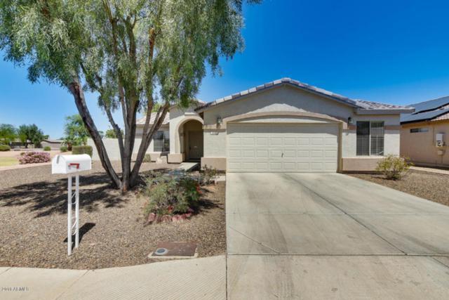 808 E Amabisca Circle, Buckeye, AZ 85326 (MLS #5755798) :: Brent & Brenda Team