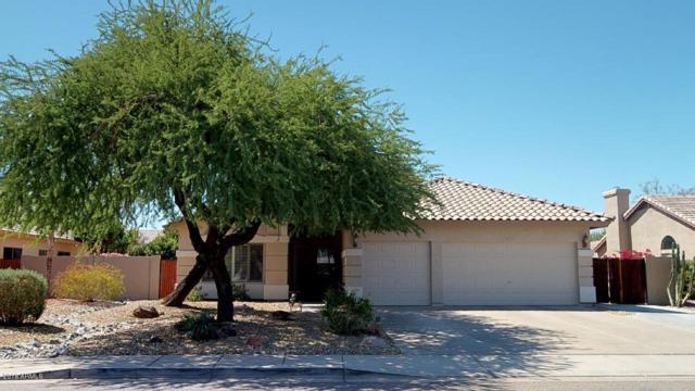 6923 W Monte Lindo, Glendale, AZ 85310 (MLS #5755799) :: Occasio Realty