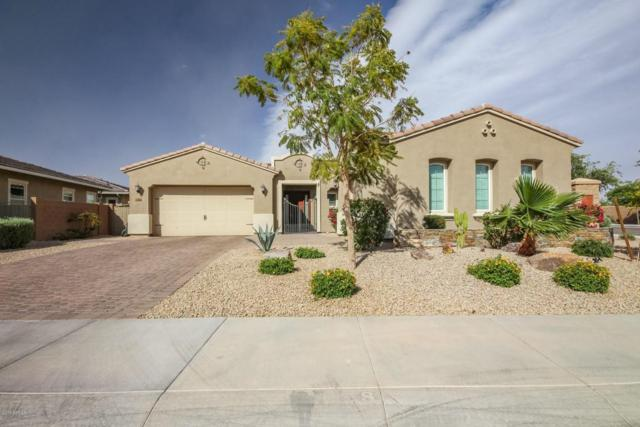 14656 W Orange Drive, Litchfield Park, AZ 85340 (MLS #5755806) :: Devor Real Estate Associates