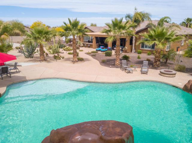 14393 W Christy Drive, Surprise, AZ 85379 (MLS #5755846) :: CANAM Realty Group