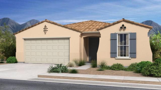 16255 W Canterbury Drive, Surprise, AZ 85379 (MLS #5755852) :: The Worth Group