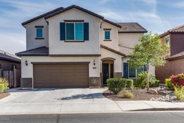 10745 W Yearling Road, Peoria, AZ 85383 (MLS #5755878) :: Brent & Brenda Team