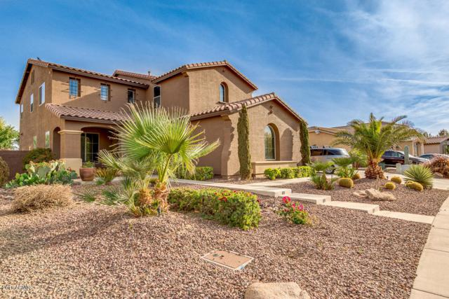 677 W Basswood Avenue, Queen Creek, AZ 85140 (MLS #5755882) :: The Everest Team at My Home Group