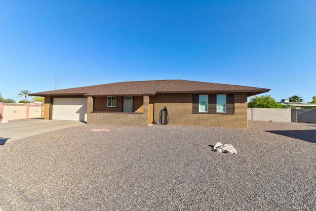 10634 W Cimarron Court, Sun City, AZ 85373 (MLS #5755892) :: Occasio Realty