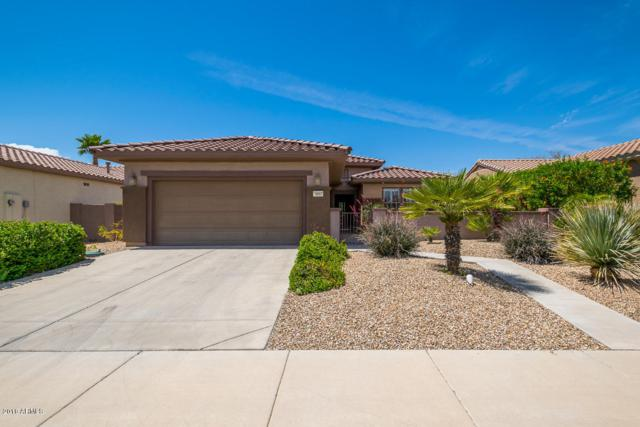 16667 W Rincon Peak Drive, Surprise, AZ 85387 (MLS #5755899) :: The Worth Group