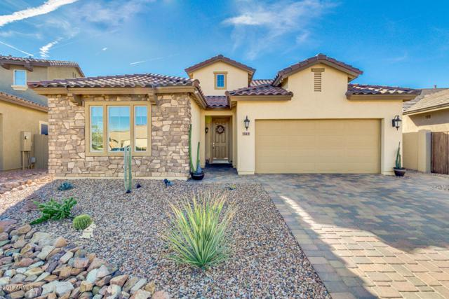 543 E Red Mesa Trail, San Tan Valley, AZ 85143 (MLS #5755919) :: Kortright Group - West USA Realty