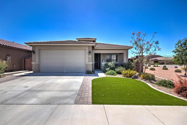 1501 W Nectarine Avenue, Queen Creek, AZ 85140 (MLS #5755926) :: The Everest Team at My Home Group