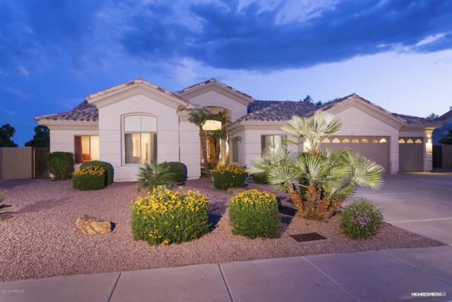 7165 W Villa Chula, Glendale, AZ 85310 (MLS #5755938) :: Arizona Best Real Estate