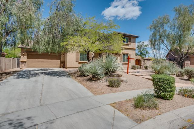 2328 W Bramble Berry Lane, Phoenix, AZ 85085 (MLS #5755956) :: The Worth Group