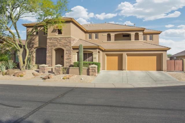 2167 W Cohen Court, Anthem, AZ 85086 (MLS #5755981) :: The Daniel Montez Real Estate Group