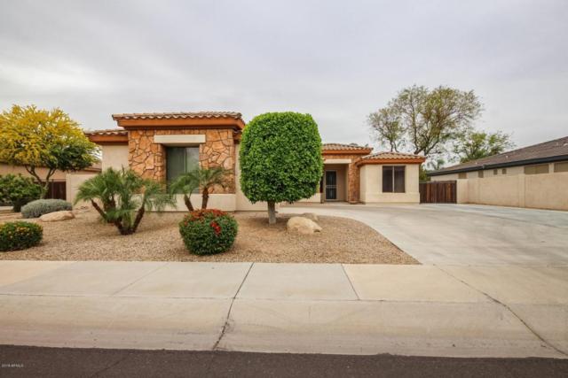14574 W Windsor Avenue, Goodyear, AZ 85395 (MLS #5756019) :: Essential Properties, Inc.