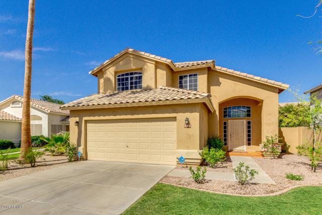 7368 W Louise Drive, Glendale, AZ 85310 (MLS #5756047) :: Occasio Realty