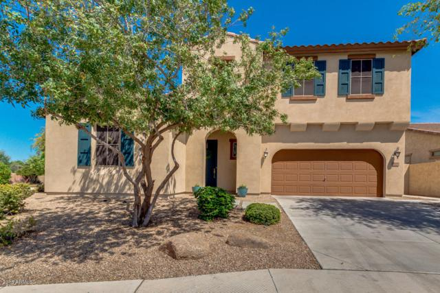 3600 E Powell Place, Chandler, AZ 85249 (MLS #5756106) :: The Everest Team at My Home Group