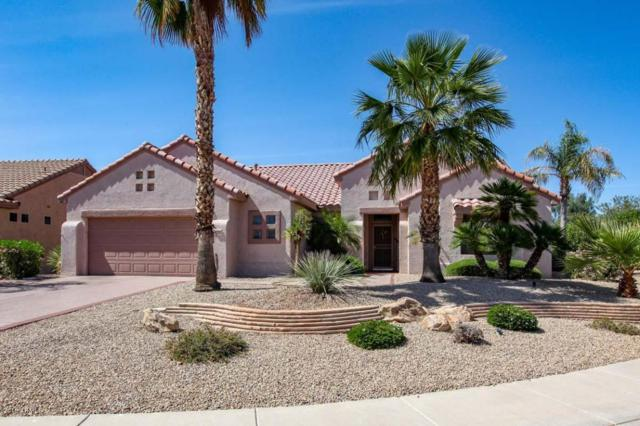18532 N Laguna Azul Court, Surprise, AZ 85374 (MLS #5756124) :: Kortright Group - West USA Realty