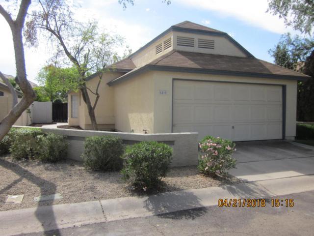5237 W Jupiter Way N, Chandler, AZ 85226 (MLS #5756163) :: The Pete Dijkstra Team