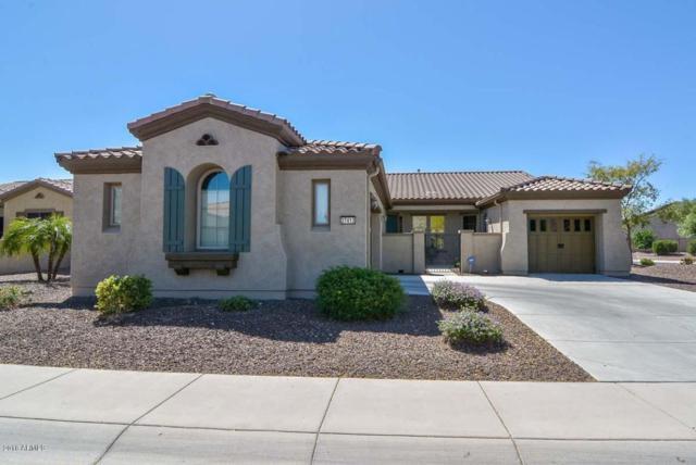 27413 N Cardinal Lane, Peoria, AZ 85383 (MLS #5756168) :: Devor Real Estate Associates