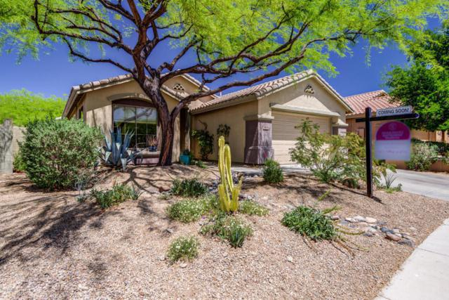41078 N Wild West Trail, Anthem, AZ 85086 (MLS #5756173) :: The Daniel Montez Real Estate Group