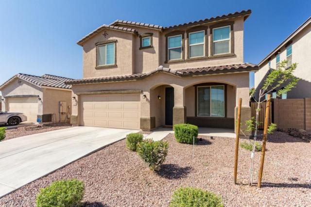2420 W Chinook Drive, Queen Creek, AZ 85142 (MLS #5756179) :: The Daniel Montez Real Estate Group
