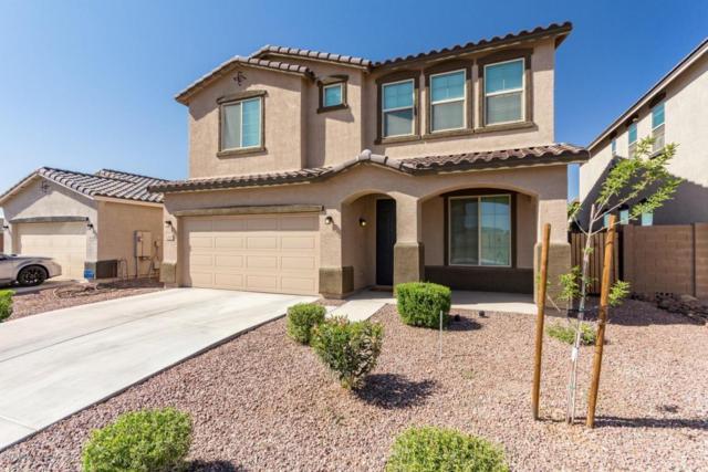 2420 W Chinook Drive, Queen Creek, AZ 85142 (MLS #5756179) :: The Pete Dijkstra Team