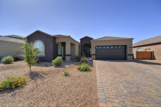 19733 E Raven Drive, Queen Creek, AZ 85142 (MLS #5756184) :: The Daniel Montez Real Estate Group